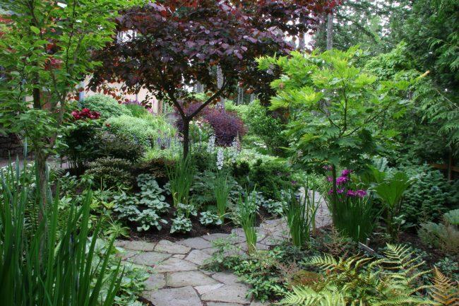jardin clásico