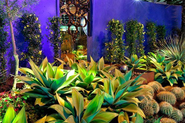 Jardines mexicanos 30 im genes e ideas para inspirarse ecoraideas - Plantas de interior tropicales ...
