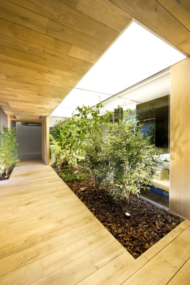 Jardines interiores modernos 25 fotos y consejos de dise o for Diseno de jardines frentes de casas