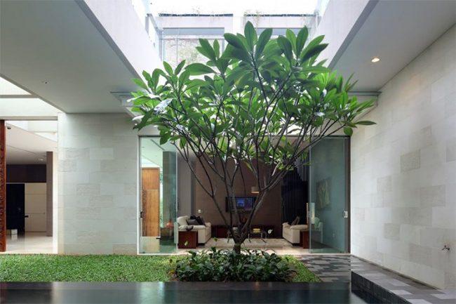 Jardines interiores modernos 25 fotos y consejos de dise o for Jardines de pared para interiores