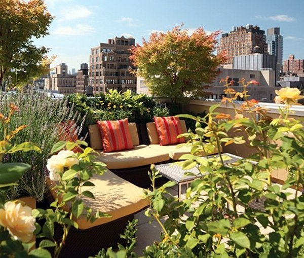 Terrazas peque as 60 fotos e ideas ecoraideas for Jardines verticales para terrazas
