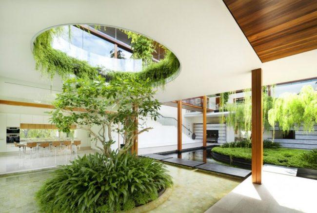 Jardines interiores modernos 25 fotos y consejos de dise o for Plantas verticales de interior