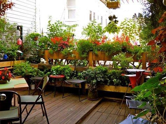 Plantas terraza terraza decorada con plantas plantas - Maceteros para terrazas ...